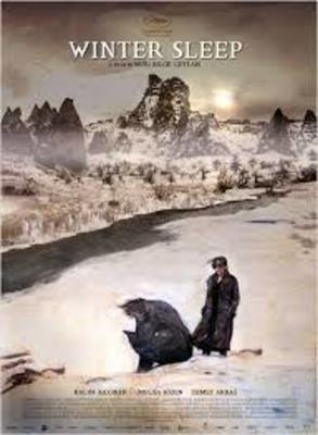 نقد فیلم خواب زمستانی, Winter Sleep, صخره ها چشم دارند.