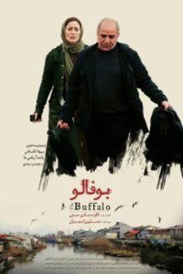 نقد فیلم بوفالو, the buffalo, بعد از داستان!