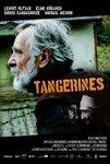 نقد فیلم نارنگی ها, Tangerines, قلب هایی که مرزی نمی شناسند