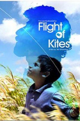 پوستر فیلم پرواز بادبادکها