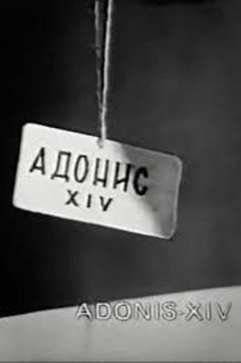 فیلم آدونیس 14