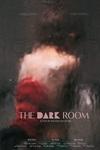 نقد فیلم اتاق تاریک, نقد یا تخریب