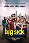 نقد فیلم بیماری بزرگ, The Big Sick, عشق گیج و منگ