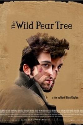 نقد فیلم درخت گلابی وحشی, The Wilde Pear Tree, ما نیز پیش از این مرده ایم