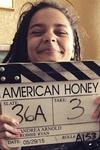 نقد فیلم عزیز آمریکایی, AMERICAN HONEY, رویای زندگی آمریکایی