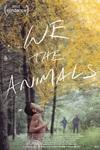 """نقد فیلم ما حیوانات, We the Animals, فیلمی مانند فیلم"""" مهتاب"""""""