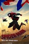 نقد فیلم مرد عنکبوتی: درون دنیای عنکبوتی, Spider-Man: Into the Spider-Verse, بازگشت قهرمانانه مرد عنکبوتی