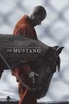 نقد فیلم اسب وحشی, The Mustang, نقش آفرینی قوی ماتیاس اسخونارتس