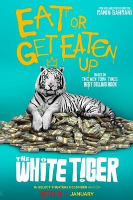 نقد فیلم ببر سفید, The White Tiger, داستانی جذاب دربارهی بندگی، رنج و عشق