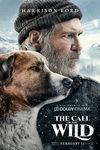 نقد فیلم آوای وحش, The Call of the Wild, سگ ها ، سگ ها از کنار یک دیگر