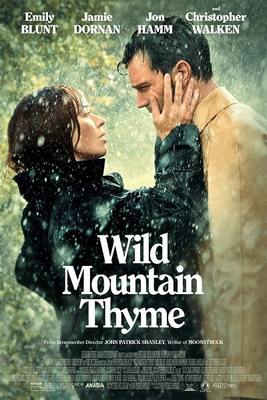نقد فیلم آویشن کوهستان وحشی, Wild Mountain Thyme, کینهها در ایرلند به آسانی بخشوده نمیشوند