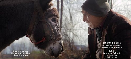 جایزه بهترین فیلم جشنواره بیگور اسپانیا به «سینما خر» رسید