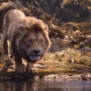 دونالد گلاور در انیمیشن «شیر شاه» (The Lion King)