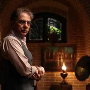مهدی احمدی در سریال «بوم و بانو»