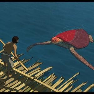 انیمیشن سینمایی «لاک پشت قرمز»(The Red Turtle)