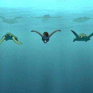 نمایی از انیمیشن سینمایی «لاک پشت قرمز»(The Red Turtle)