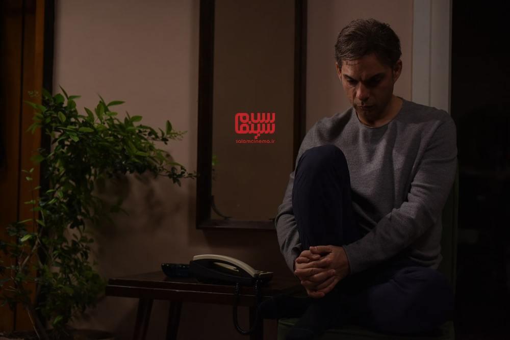 پیمان معادی در فیلم سینمایی «ناگهان درخت»