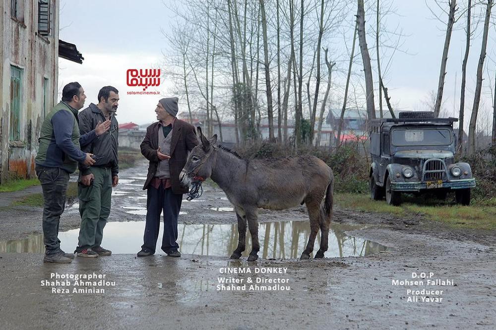 حسن رضایی و بابک نوری در فیلم «سینما خر»