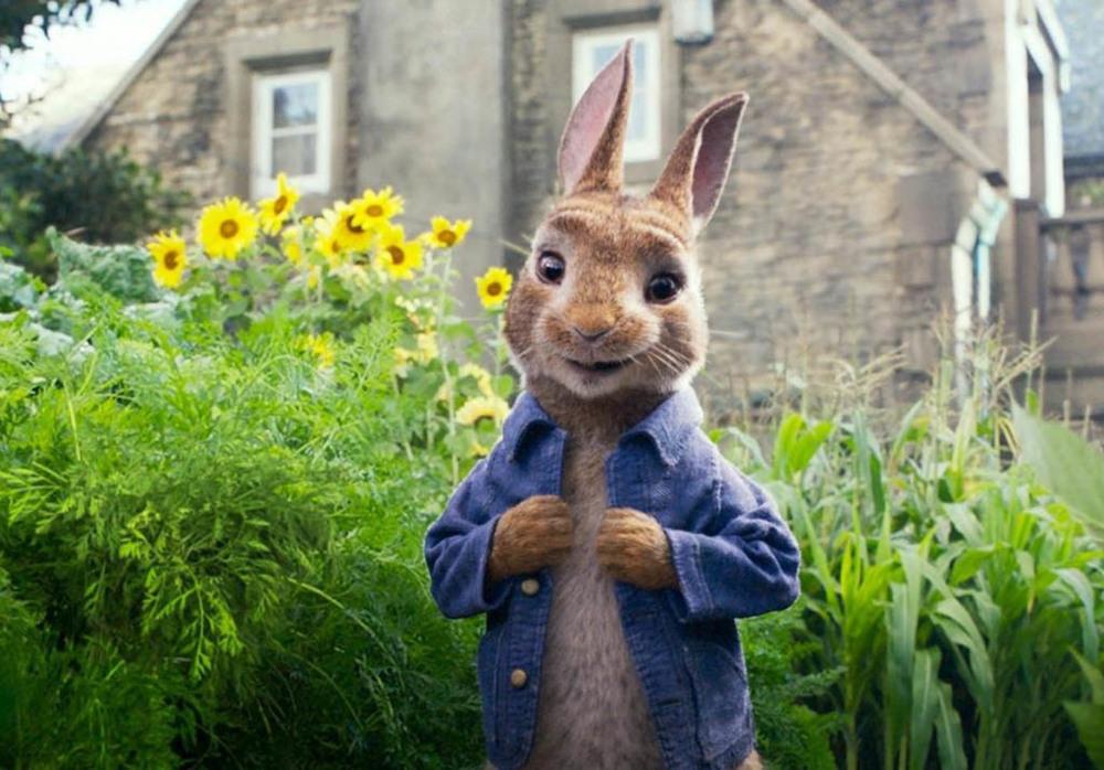 جیمز کوردن در فیلم «پیتر خرگوشه 2: فراری» (Peter Rabbit 2: The Runaway)