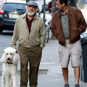 آدام سندلر و داستین هافمن در  فیلم «داستان های مایروویتز»(The Meyerowitz Stories)