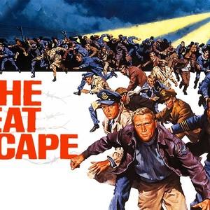 نمایی از فیلم «فرار بزرگ»(The Great Escape)