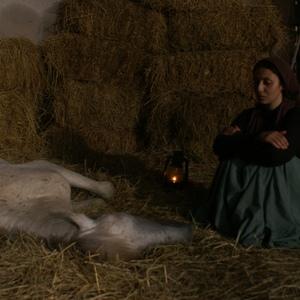 ملیسا ذاکری در فیلم مردی که اسب شد