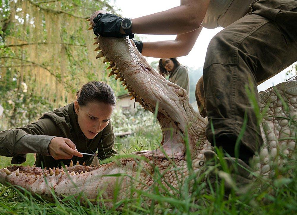 ناتالی پورتمن و تسا تامپسون در نمایی از فیلم سینمایی « نابودی »