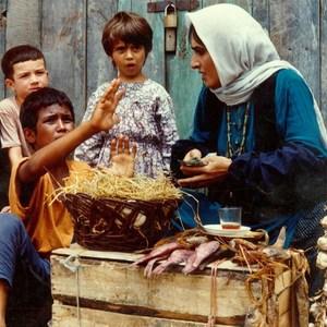 نمایی از فیلم باشو غریبه کوچک