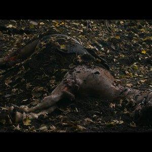 نمایی از فیلم  «خانم مکبث »( Lady Macbeth )