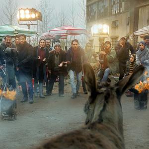 فیلم «مشمشه»