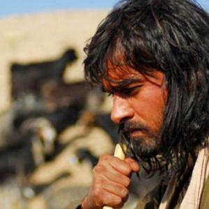 شهاب حسینی در فیلم «نیلوفر»