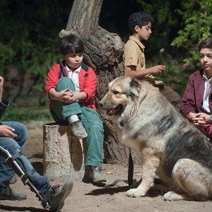 نمایی از فیلم «جنجال در عروسی» ساخته سید رضا خطیبی