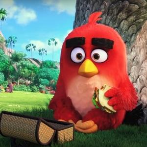 فیلم «پرندگان خشمگین»(The Angry Birds)