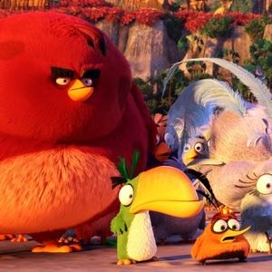 «پرندگان خشمگین»(The Angry Birds)