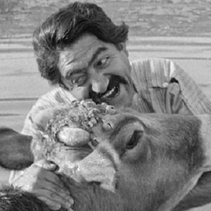عزت الله انتظامی در فیلم «گاو»