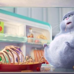 انیمیشن «زندگی مخفیانه حیوانات خانگی»(The Secret Life of Pets)