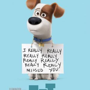 پوستر انیمیشن «زندگی مخفیانه حیوانات خانگی»(The Secret Life of Pets)