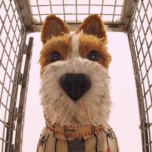 فیلم سینمایی «جزیره سگ ها» 5 ( Isle of Dogs)