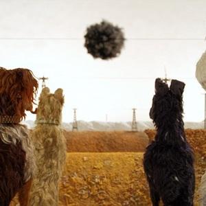 فیلم سینمایی «جزیره سگ ها» 8 ( Isle of Dogs)