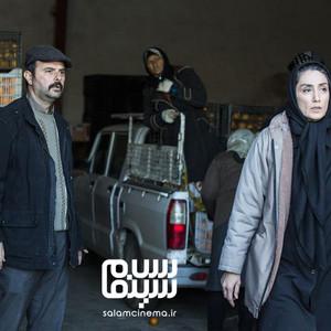 هدیه تهرانی و علی مصفا در نمایی از فیلم «روزهای نارنجی»
