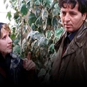 جمیله شیخی و ابوالفضل پورعرب در فیلم «همسر دلخواه من»