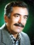 محمد افشارنجم