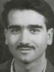 پرویز فنی زاده